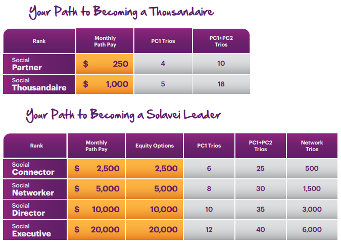How much can you make with Solavei